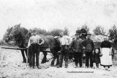 zand-rijden-met-paard-en-wagen